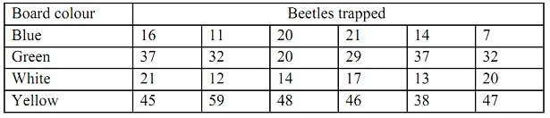1329_trapped beetels data.jpg