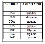1508_Amino acid.jpg