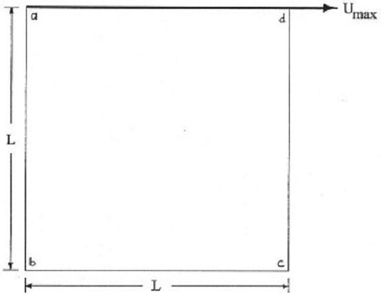 1723_squre cavity flow.jpg